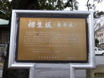 P1000831.jpg