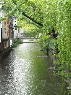 kyoto2008-04-28 (100).jpg
