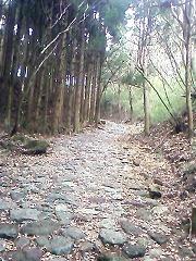 09-01-07携帯 (4)_blog.jpg