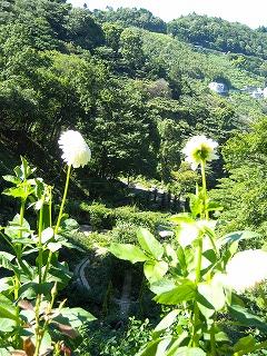 09-07-25 046_blog.jpg