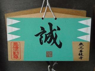 hino2008-05-06_192_blog.jpg